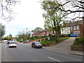 TG2917 : Mid section of Norwich Road by Basher Eyre