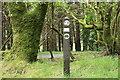 NX0674 : Trail Marker, Ayrshire Coastal Path by Billy McCrorie