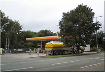 SJ9594 : Shell at Shell by Gerald England
