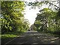 TA1563 : A165  Kingsgate  toward  roundabout by Martin Dawes