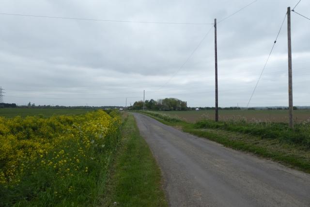 Road near Cedar Farm