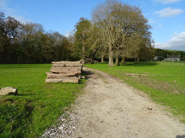 Trackway and logs on the Chatsworth Estate