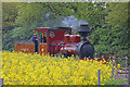 SK2405 : Statfold Barn Railway - green, red and yellow by Chris Allen
