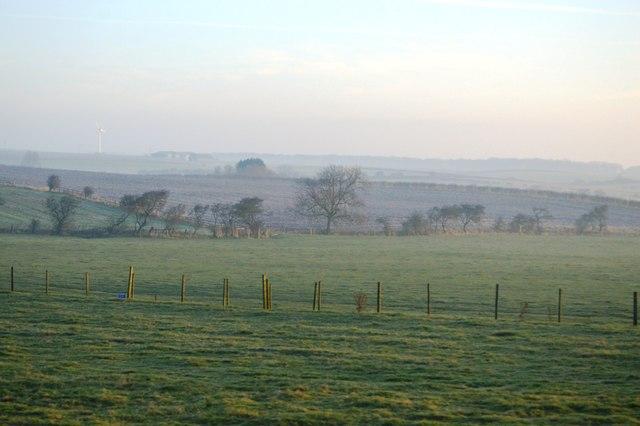 Rolling chalk farmland