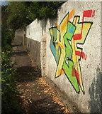 SX9065 : Graffiti below Lower Audley Avenue, Torquay by Derek Harper