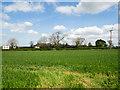 NZ2617 : Holly House Farm beyond field by Trevor Littlewood