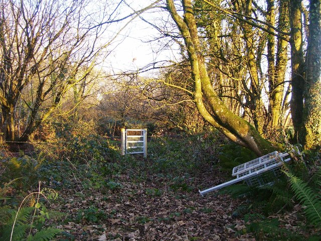 Trenewydd Lane, Llanteg - footpath being re-opened