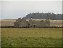 NY9569 : Farmland and derelict buildings by Graham Robson