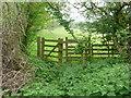 TL1527 : Public footpath to Great Offley village by Humphrey Bolton