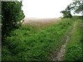 SU8517 : Track on Bepton Down by Chris Gunns