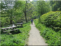 SD9927 : Footpath from Midgehole to Hebden Bridge and picnic tables beside Hebden Water by Peter Wood