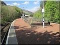 NN3115 : Ardlui railway station, Argyll and Bute by Nigel Thompson