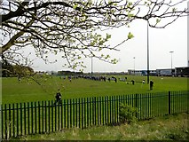 NZ1151 : Playing fields at Consett Rugby Club by Robert Graham