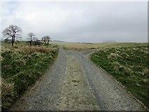 NO2204 : Road from Holl Reservoir, Lomond Hills by Bill Kasman