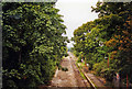 TQ2569 : Morden Road Halt, under reconstruction for Croydon Tramlink, 1998 by Ben Brooksbank
