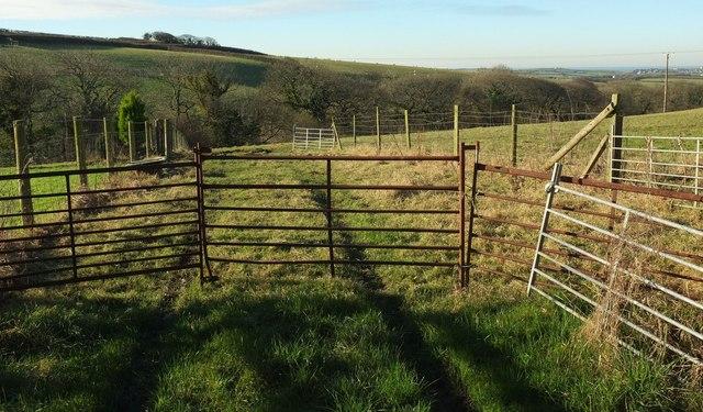 Gates and fences near Kitts Farm