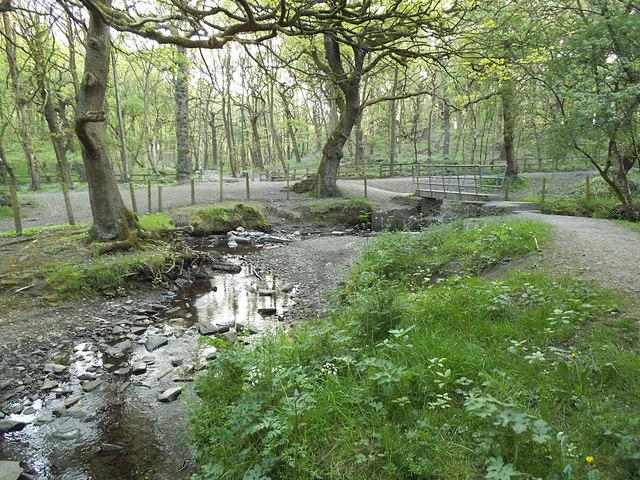 Bridge over the Tyersal Beck in Black Carr Wood