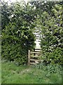 SK3821 : Double stile in a hedge by Graham Hogg