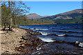 NN1885 : Beside Loch Lochy (2) by Chris Heaton