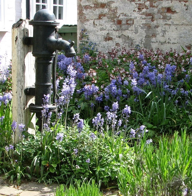 Water pump in front garden