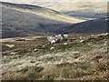 NS9401 : Sheep and Moorland by wrobison