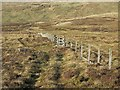 NS9601 : Moorland fence near Daer Hass by wrobison