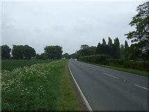 TF6404 : Downham Road (A1122) by JThomas
