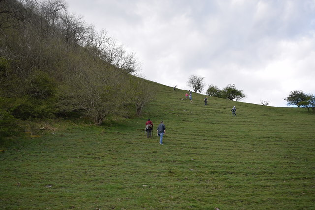 Hillside by the Manifold Way