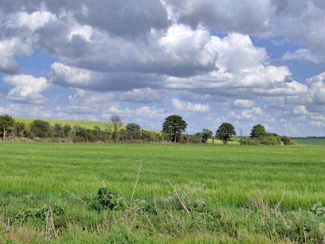 Bridleway along Cat Ditch