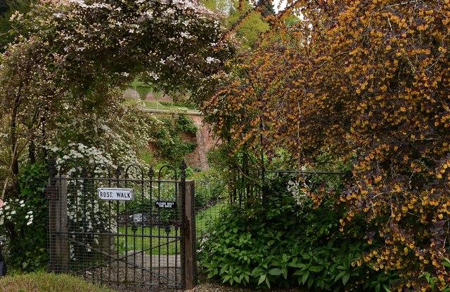 Riverhill Himalayan Garden: The Rose Walk entrance