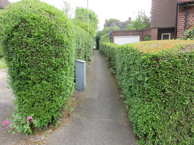 Footpath to Deansway