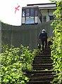 SX9265 : Path by the cliff railway by Derek Harper