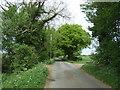 TG0000 : Little Ellingham Road by JThomas