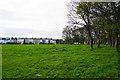 NZ2365 : Castle Leazes by Bill Boaden
