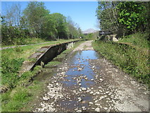 NM9247 : Appin railway station (site), Argyll and Bute by Nigel Thompson
