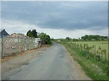 TG0800 : Low Road near Low Farm by JThomas