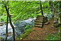 NY5225 : Foundations of old bridge by Mick Garratt