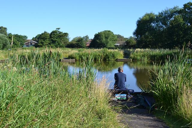 Fishing before breakfast, Kingfisher Pool, Myton Fields, south Warwick