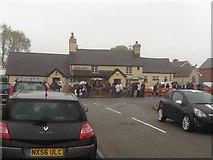 SJ0852 : Busy Day at the Glan Llyn by Eirian Evans