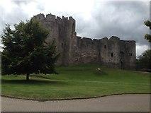 ST5394 : Chepstow Castle by Eirian Evans