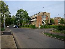 TL4661 : Flats on Atkins Close by Hugh Venables