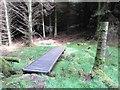 NO2204 : Footbridge in woodland, Lomond Hills by Bill Kasman