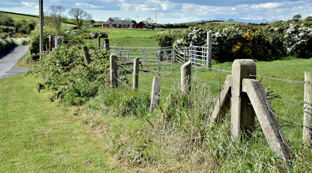 Concrete fence posts, Ballybryan near Greyabbey (May 2017)