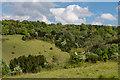 TQ1751 : Zig-Zag Valley by Ian Capper
