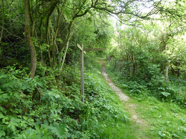 Junction of Footpath and Rathfinny Trail