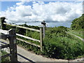TQ5201 : Footpath Junction with South Downs Way by PAUL FARMER