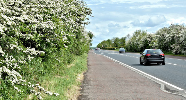 The Moira Road, Ballylacky, Moira/Ballinderry (May 2017)