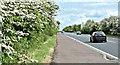 J1665 : The Moira Road, Ballylacky, Moira/Ballinderry (May 2017) by Albert Bridge
