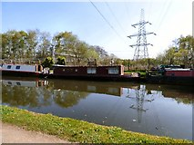 SJ7993 : Venus on the Bridgewater Canal by Gerald England