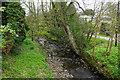 NZ0560 : Stocksfield Burn by Bill Boaden
